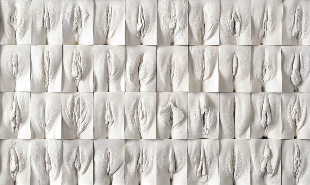 Tissekone, fisse, vagina, kvindelig kønsdel, kvinderudenfilter